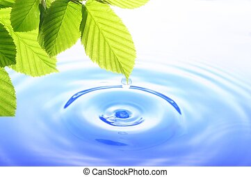 green leaf and water drop showing spa zen or wellness ...