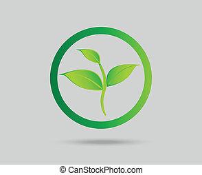 Green leaf eco icon concept