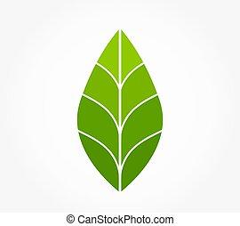 Green leaf eco icon.