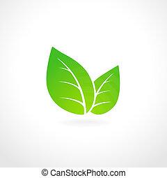 Green leaf ecology emblem