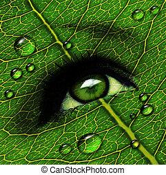 green leaf eye with dewdrops