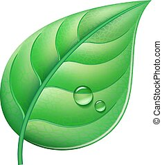 Green leaf - Glossy green leaf with drops of water. Vector...