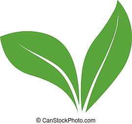 Green leaf illustration Herbal natural logo icon