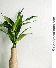 green leaf in bottle vase with grunge wall background