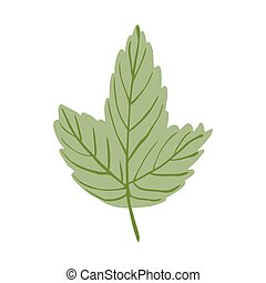 Green leaf isolated on white background. Beautiful hand drawn icon natural.