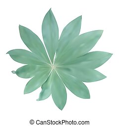 Green leaf Isolated on white background. Vector Illustration.