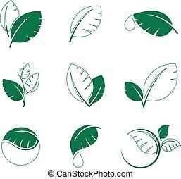 Green leaf leaves symbol vector icon set