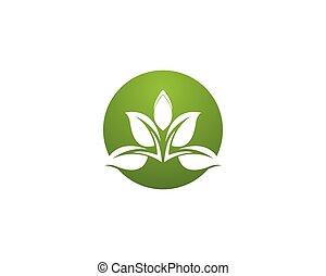 Green leaf nature logo