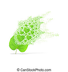 Green leaf of heart on white background