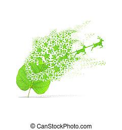 Green leaf of santa on white background