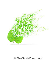 Green leaf of spoon on white background