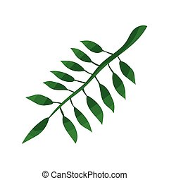 Green leaf of tropical tree vector Illustration