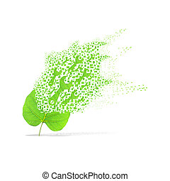 Green leaf of wrench on white background