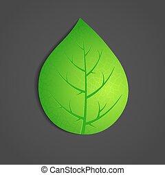 Green leaf on dark background.