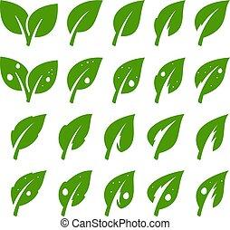 Green leaf set