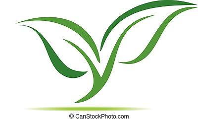 green leaf symbol vector illustration icon