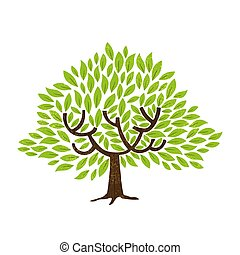 Green leaf tree isolated for nature concept