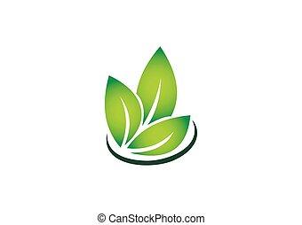 green leaf tree symbol organic vector logo