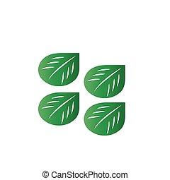 green leaf vector illustration on background