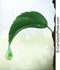 green leaf with a drop of flowing