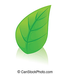 Green leaf with shadow. Vector illustration.