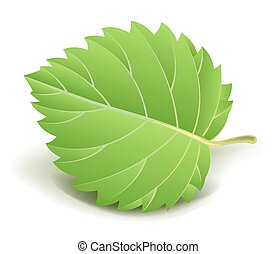 Green leaf with small stem isolated cartoon illustration -...