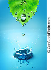 green leaf with water drops and sp