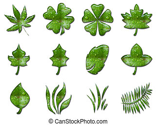 Green leafs - 3d rendering of different green leafs shapes