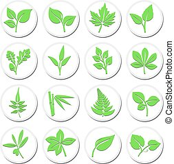 Green Leafs Plant Symbols, Stylised Selection of Vibrant Leaf Icons
