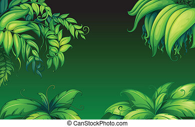 Green leafy plants - Illustration of the green leafy plants
