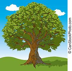 Green leafy tree in open field