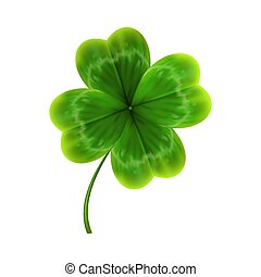 green leave of clover. realistic vector
