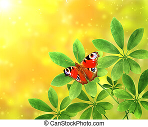 Green leaves and butterfly on sunny background