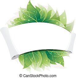 Green leaves and paper scroll