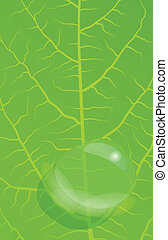 Green leaves background vector