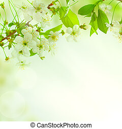 Green leaves, beautiful nature background