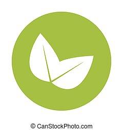Green leaves eco symbol design