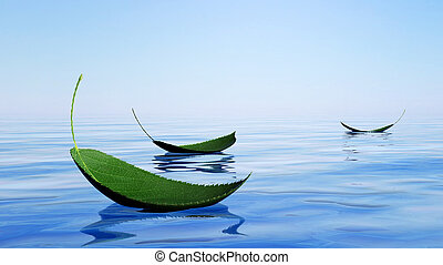 Green leaves floating on the water