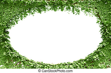Green leaves frame background