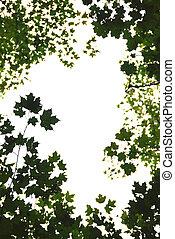 Green leaves frame - Background or frame of natural green...