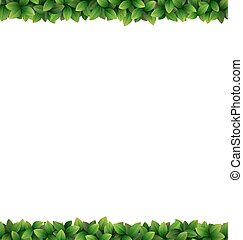 Green leaves frame isolated on white