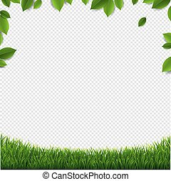 Green Leaves Frame With Green Grass Isolated Transparent Background