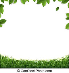 Green Leaves Frame With Green Grass Isolated White Background