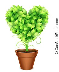 Green Leaves Heart - Potted love heart made of green leaves