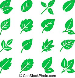Green leaves icons. Vector leaf symbols illustration, trees leafs signs on white for natural logo