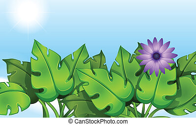 Green leaves - Illustration of the green leaves