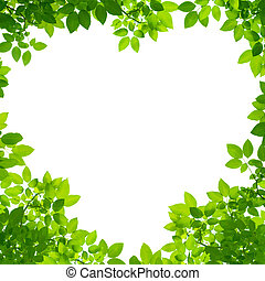 Green Leaves in heart shape on white background