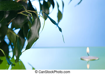 Green Leaves In Water And Floating Candle