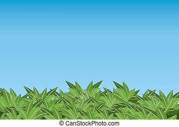 Green leaves isolated on blue sky background.