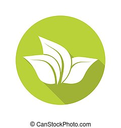 green leaves isolated on white background, organic icon. Vector.